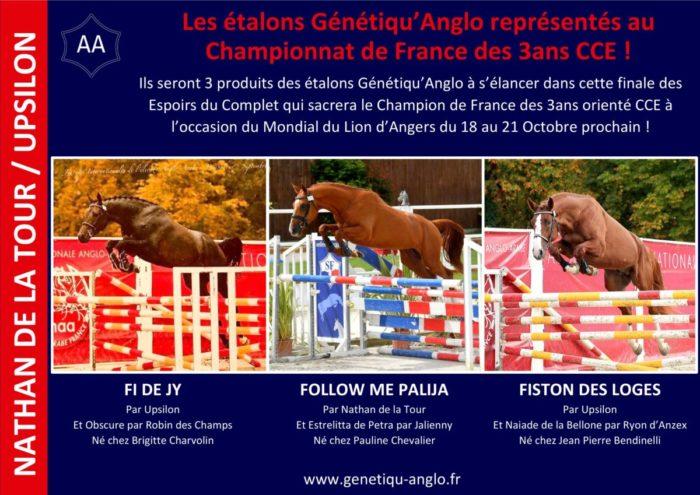 Trois produits Génétiqu'Anglo engagés dans la finale des Espoirs du Complet ! 🇫🇷