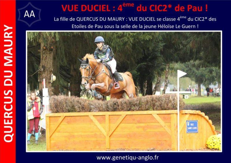 La 4ème place du CIC2* de Pau pour la fille de QUERCUS DU MAURY !