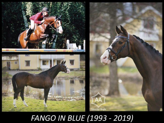 FANGO IN BLUE s'en est allé…