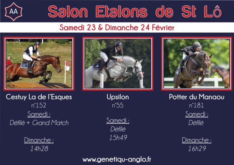 RDV ce week-end au Salon des Etalons de St Lô !