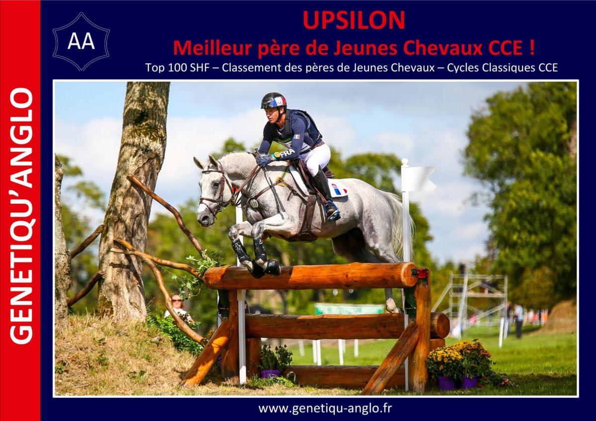 UPSILON – Meilleur père de jeunes chevaux CCE !