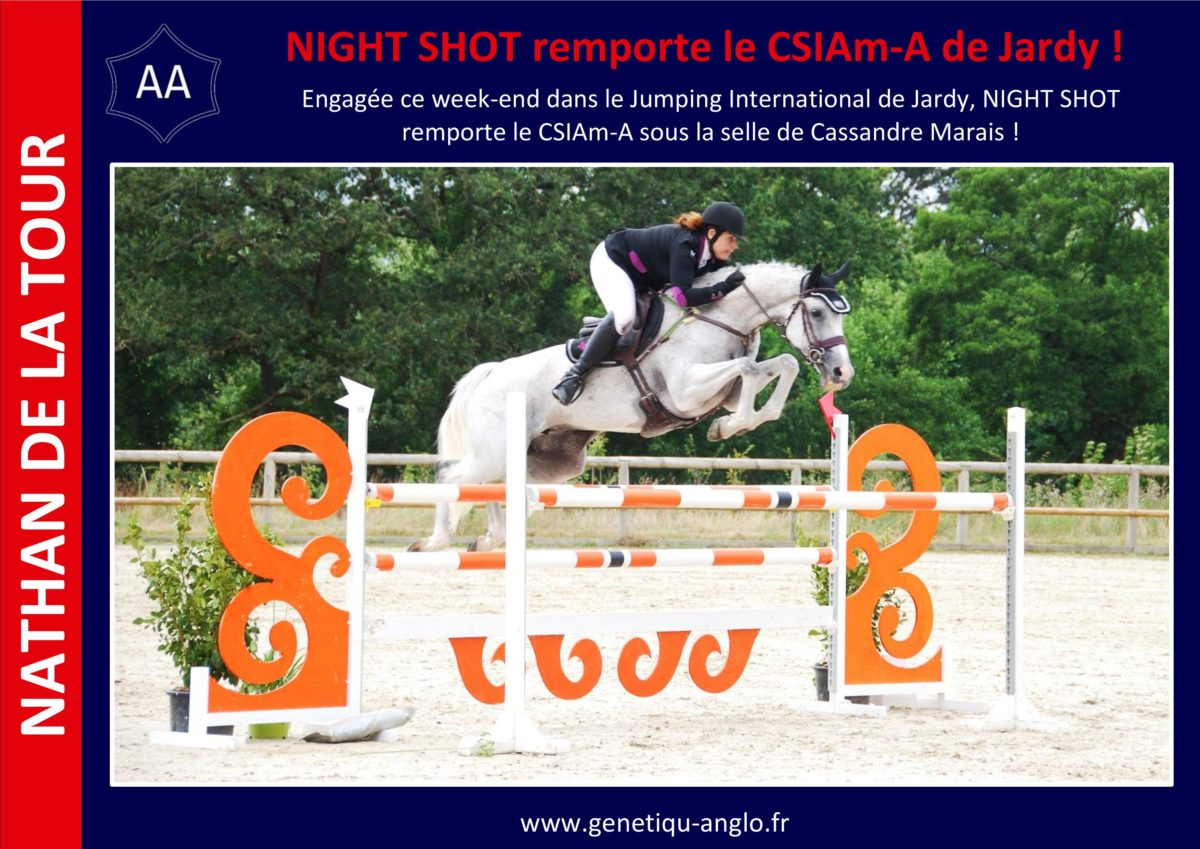 NIGHT SHOT remporte le CSIAm-A de Jardy !