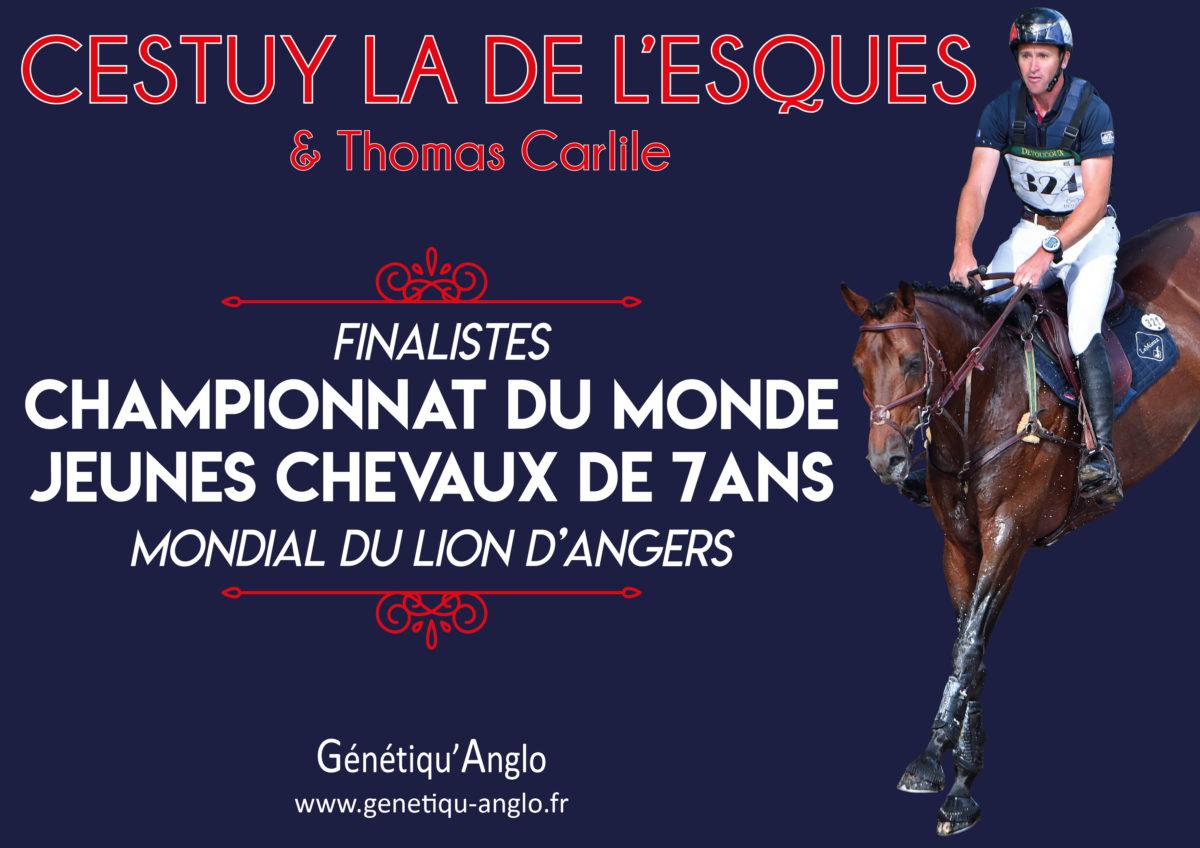 CESTUY LA DE L'ESQUES sélectionné pour le Mondial du Lion !